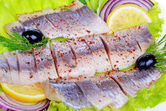Herring salad with onion Stock Image