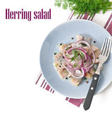 Herring salad with onion stock photo