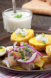 Herring salad with onions and baked potato Royalty Free Stock Image