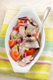 Herring salad with tomato, purple onion and spring onions Royalty Free Stock Photography