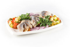 Herring salat with vegetables Stock Image