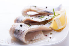 Herring with salt, pepper, herbs and lemon Stock Photography