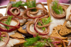 Herring sandwiche snackes Stock Images
