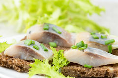 Herring sandwiches Stock Photography