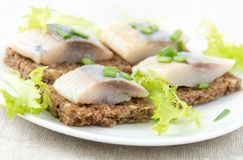 Herring sandwiches Royalty Free Stock Images