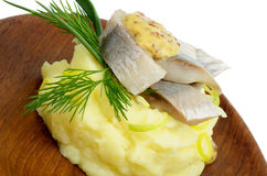 Herring Snack Stock Images