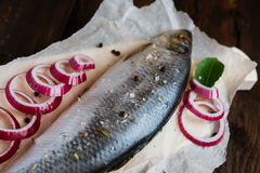 Herring and spices. Herring with onion and spices on a brown table Royalty Free Stock Images