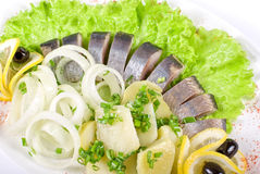 Herring with vegetables. Herring with potato and fresh vegetables closeup Stock Image