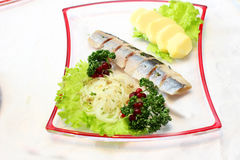 Herring with vegetables. Herring with salad, potato, parsley and cranberries with brand sauce Royalty Free Stock Image