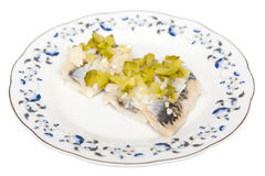 Herring white cucumber Stock Image
