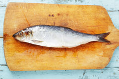 Herring on a wooden board Stock Images