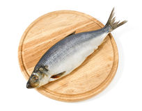 Herring on wooden hardboard Stock Image