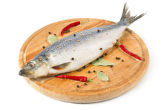 Herring on wooden hardboard with spice Royalty Free Stock Photo
