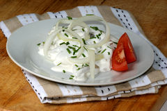 herring in yogurt sauce on a white plate Stock Photography