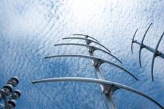 herringbone Стоковые Изображения