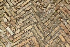 Herringbone bricks bis Stock Photography