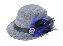 Herringbone Hat with Feathers Stock Images
