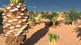 Herrliche Aussicht auf Sahara-Wüste an der Wiedergabe des Sonnenuntergangs 3d Lizenzfreie Stockfotos