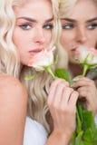 Herrliche blonde Frau mit einem rosa stieg Lizenzfreies Stockfoto
