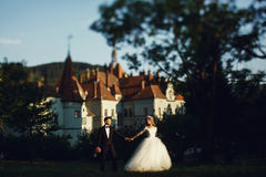 Herrliche blonde junge Braut und reizend Bräutigamhändchenhalten an Stockfotos