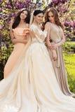 Herrliche Braut im luxuriösen Hochzeitskleid, werfend mit schönen Brautjungfern in den eleganten Kleidern auf lizenzfreies stockbild