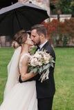 Herrliche Braut und stilvoller Bräutigam, die leidenschaftlich unter umbr küsst stockfotos
