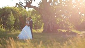 Herrliche elegante glückliche Braut und stilvoller Bräutigam auf dem Hintergrund des schönen Sonnenuntergangs im Wald stock video