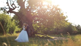 Herrliche elegante glückliche Braut und stilvoller Bräutigam, die auf dem Hintergrund des schönen Sonnenuntergangs im Wald küsst stock footage