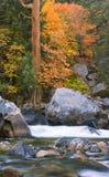 Herrliche Fall-Farbe entlang einem hetzenden Fluss Stockbild