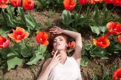Herrliche Frau auf dem roten Blumengebiet Lizenzfreies Stockbild
