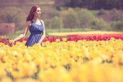 Herrliche Frau im blauen Kleid auf dem Blumengebiet am sonnigen Tag Lizenzfreie Stockbilder
