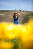 Herrliche Frau im blauen Kleid auf dem gelben Tulpengebiet Lizenzfreie Stockfotos