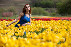 Herrliche Frau im blauen Kleid auf dem schönen Blumengebiet Lizenzfreies Stockfoto