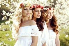 Herrliche Frauen mit dem dunklen Haar, das im Frühjahr Garde aufwirft Stockfotos