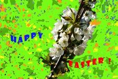 Herrliche Kirschniederlassungen auf einem grünen Hintergrund stock abbildung