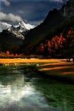 Herrliche Landschaft Stockfotos