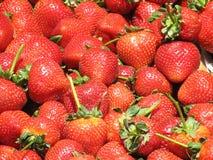 Herrliche reife Erdbeeren auf einem Bauernhof-Stand lizenzfreies stockfoto
