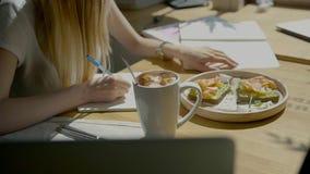 Herrliche Studentin schreibt Kursarbeit auf ihren Computer, das Freiberuflermädchen, das am Café über Notizbuchlaptop arbeitet, s stock video