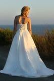Herrliche u. elegante Braut Stockfotografie