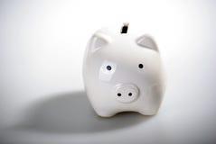 Herrliche weiße piggy Querneigung Lizenzfreies Stockfoto