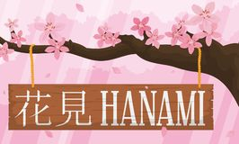 Herrlicher Cherry Tree mit Blumen und Holzschild für Hanami, Vektor-Illustration stock abbildung