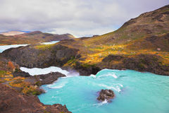 Herrlicher Nationalpark im chilenischen Patagonia Reichliches hastendes S Stockfotografie