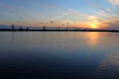 Herrlicher Sonnenuntergang über dem See Stockbild