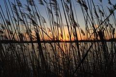Herrlicher Sonnenuntergang über dem See Lizenzfreie Stockbilder