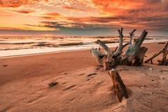 Herrlicher Sonnenuntergang Stockfotos
