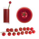 ? herry томаты на ветви Стоковые Фото