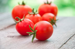 Herry tomatoes Royalty Free Stock Photos