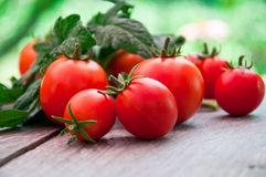 Herry tomatoes Stock Image