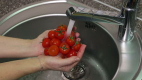 Сherry Tomatoes in Hands Under Running Water stock footage