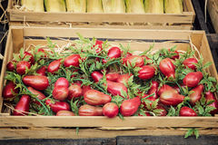 Herry tomatoes in the wooden box Royalty Free Stock Photography